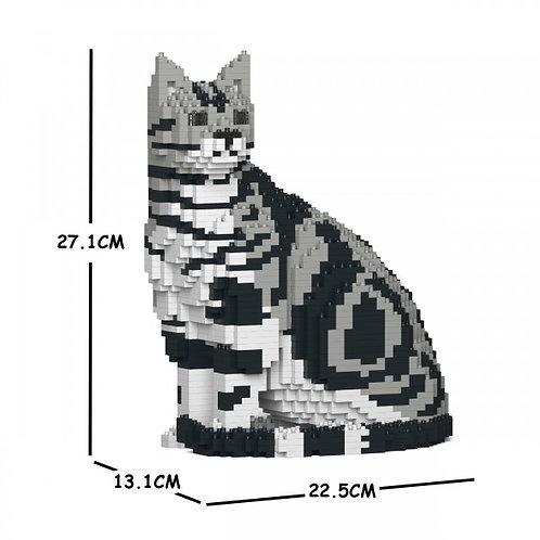 American Shorthair Cat 01S  (需訂貨)