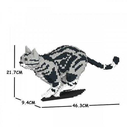 American Shorthair Cat 06S  (需訂貨)