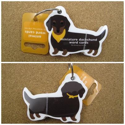 D00592 臘腸犬word cards