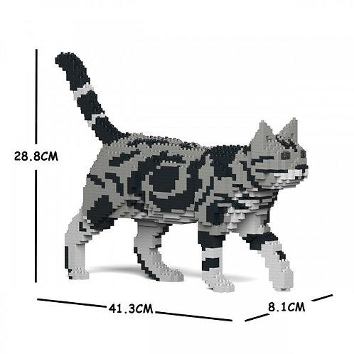 American Shorthair Cat 02S  (需訂貨)