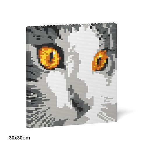 Cat Eyes Brick Painting 03S  (需訂貨)