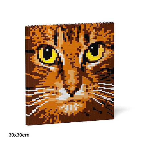 Cat Eyes Brick Painting 04S-M01  (需訂貨)