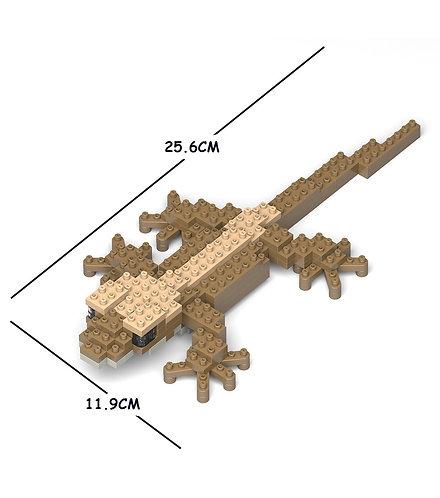 Jekca 睫角守宮 Crested Gecko 01S (需訂貨)