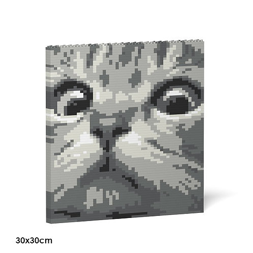 Cat Eyes Brick Painting 02S-M02  (需訂貨)