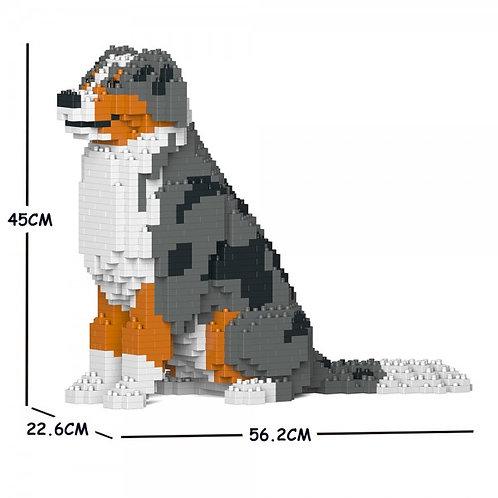 澳洲牧羊犬 Australian Shepherd 01C-M01 M size (需訂貨)