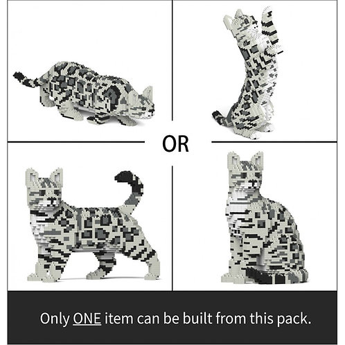 Bengal Cat 4-In-1 Pack 01S-M02