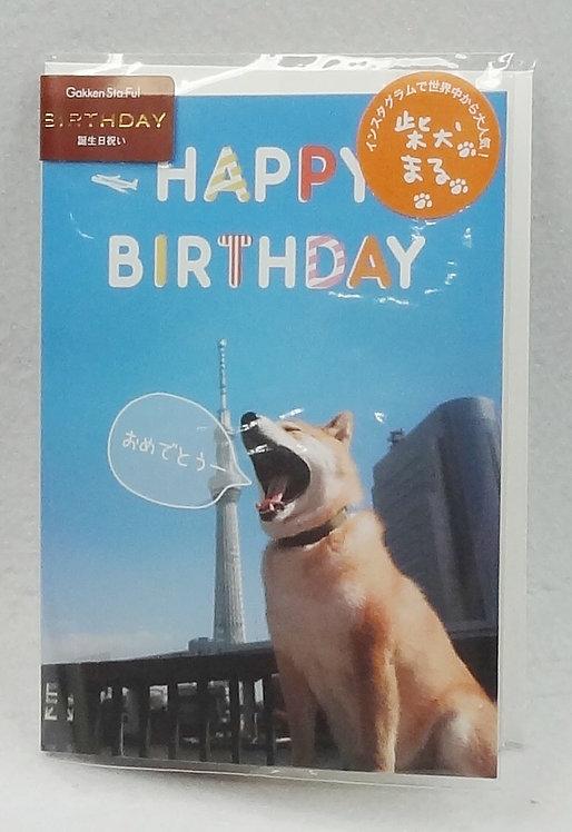 D01652_2 柴犬Maru立體生日咭_藍天