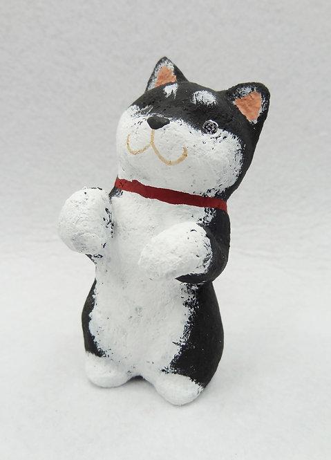 D02125 黑色柴犬