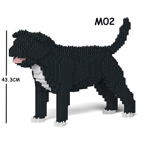 斯塔福郡鬥牛㹴 Staffordshire Bull Terrier 01C-M02 M size