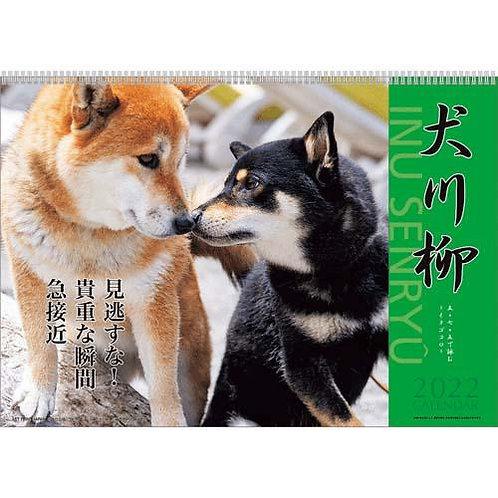 904_239 犬川柳