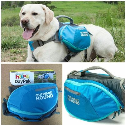 D00791 Outward Hound DayPak - M Blue(SP_200_2)