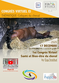 FLYER -  CONGRES VIRTUEL EI 2020.png