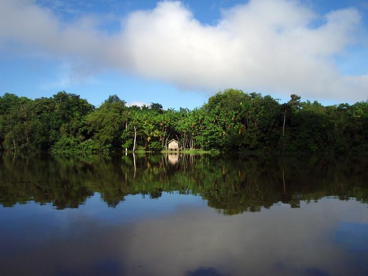 Alone in the Amazon   Pará, Brazil, 2008