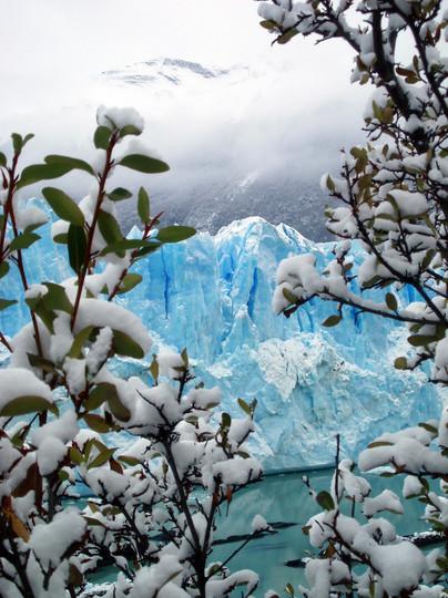 Blue in Green   Perito Moreno, Patagonia, Argentina, 2008