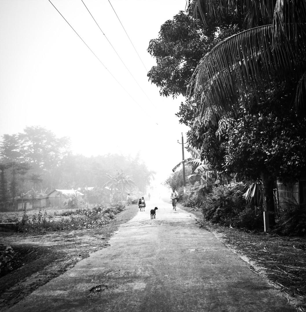 Street Life iii | Assam, 2017