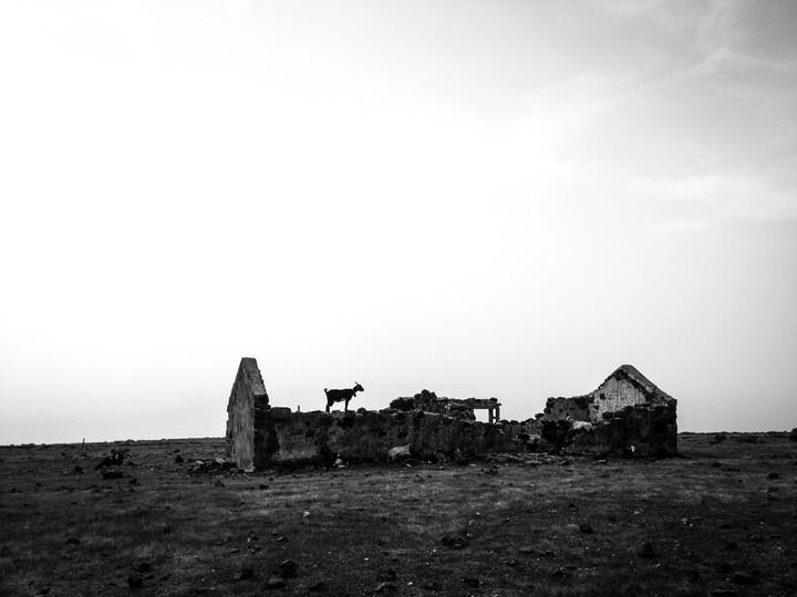 Lone | La Gomera