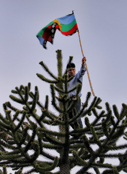 Mapuche's of Lonquimay