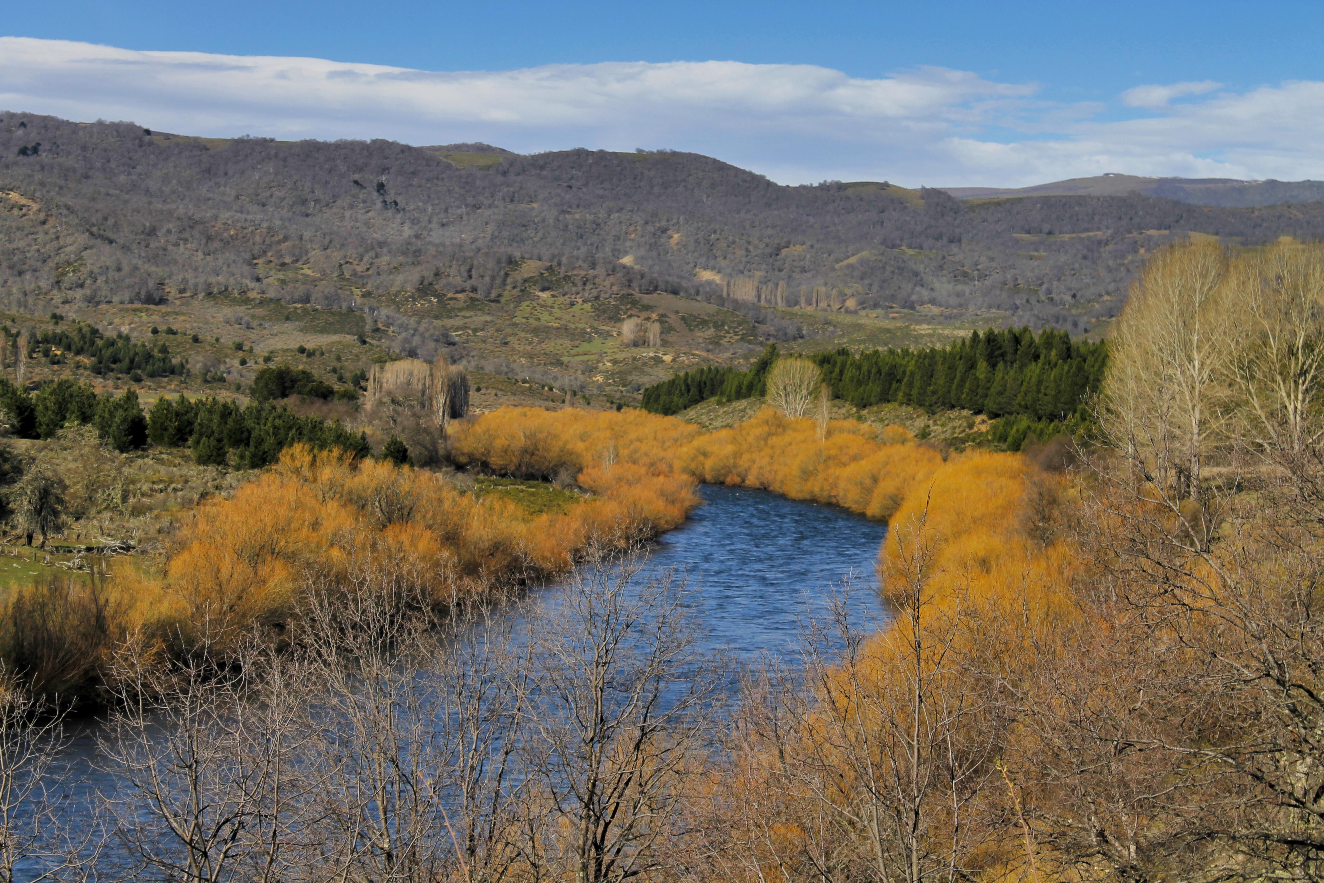 Lonquimay River