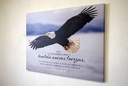 614042007943-lienzo-aguila-isaias-40-31-