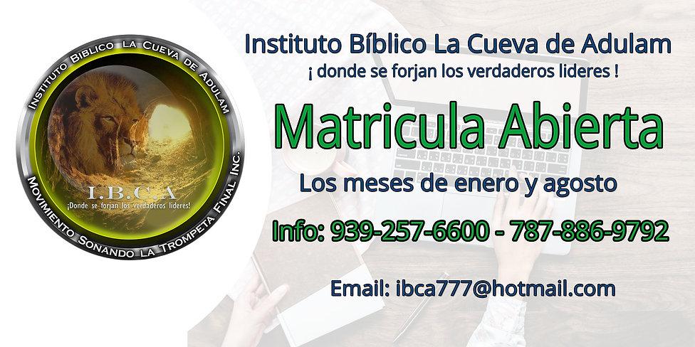 banner IBCA.jpg