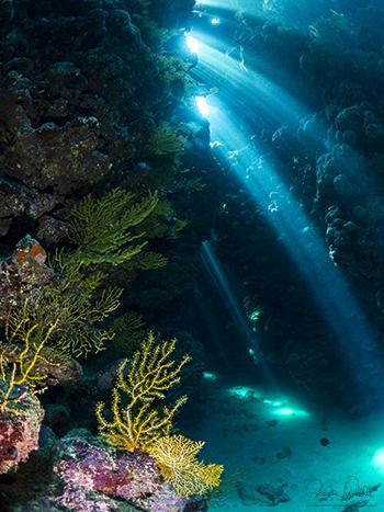 bella bella in grotta