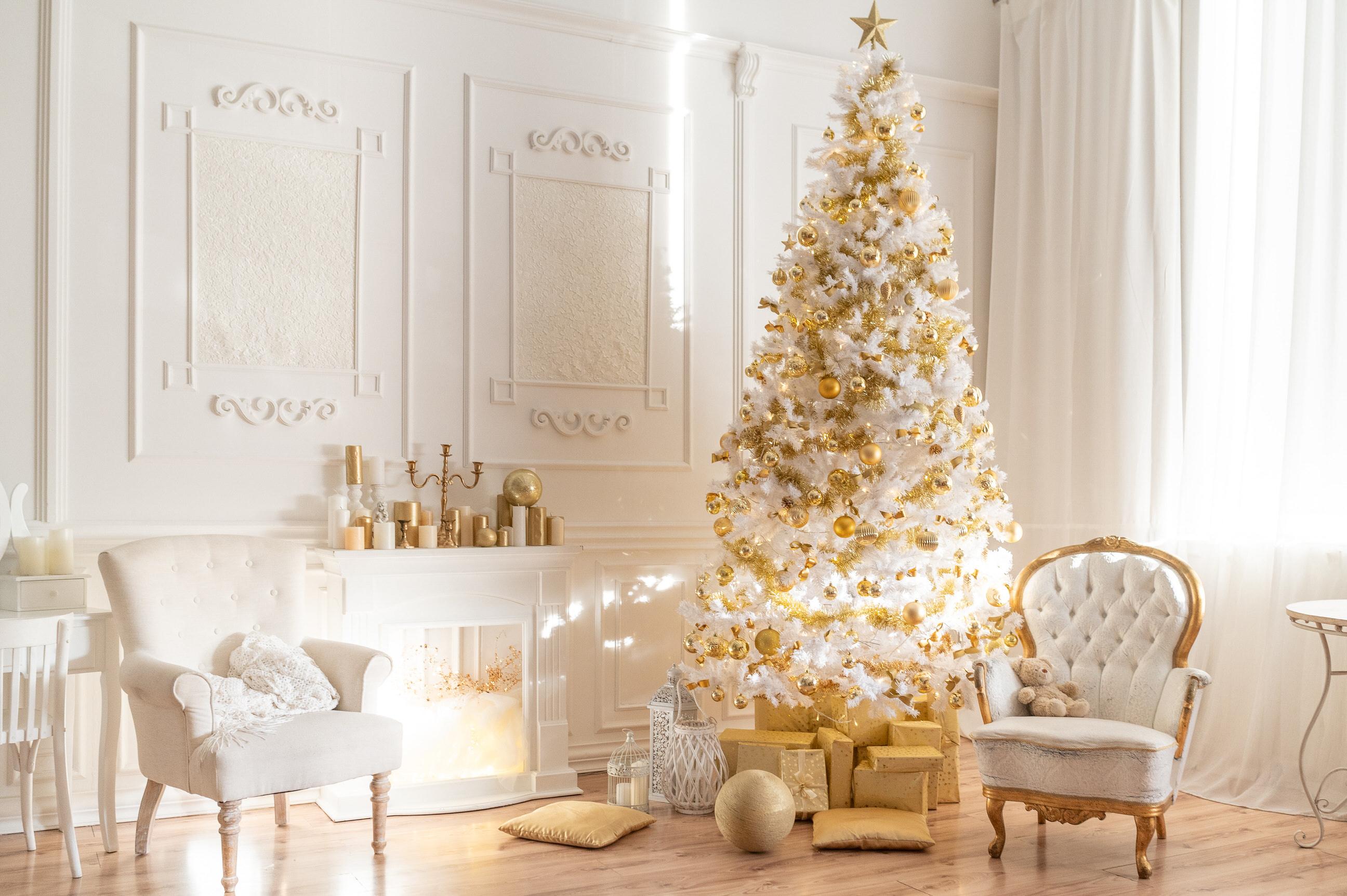 Ziemassvētku fotosesijas Rīgā www.labafotostudija.lv