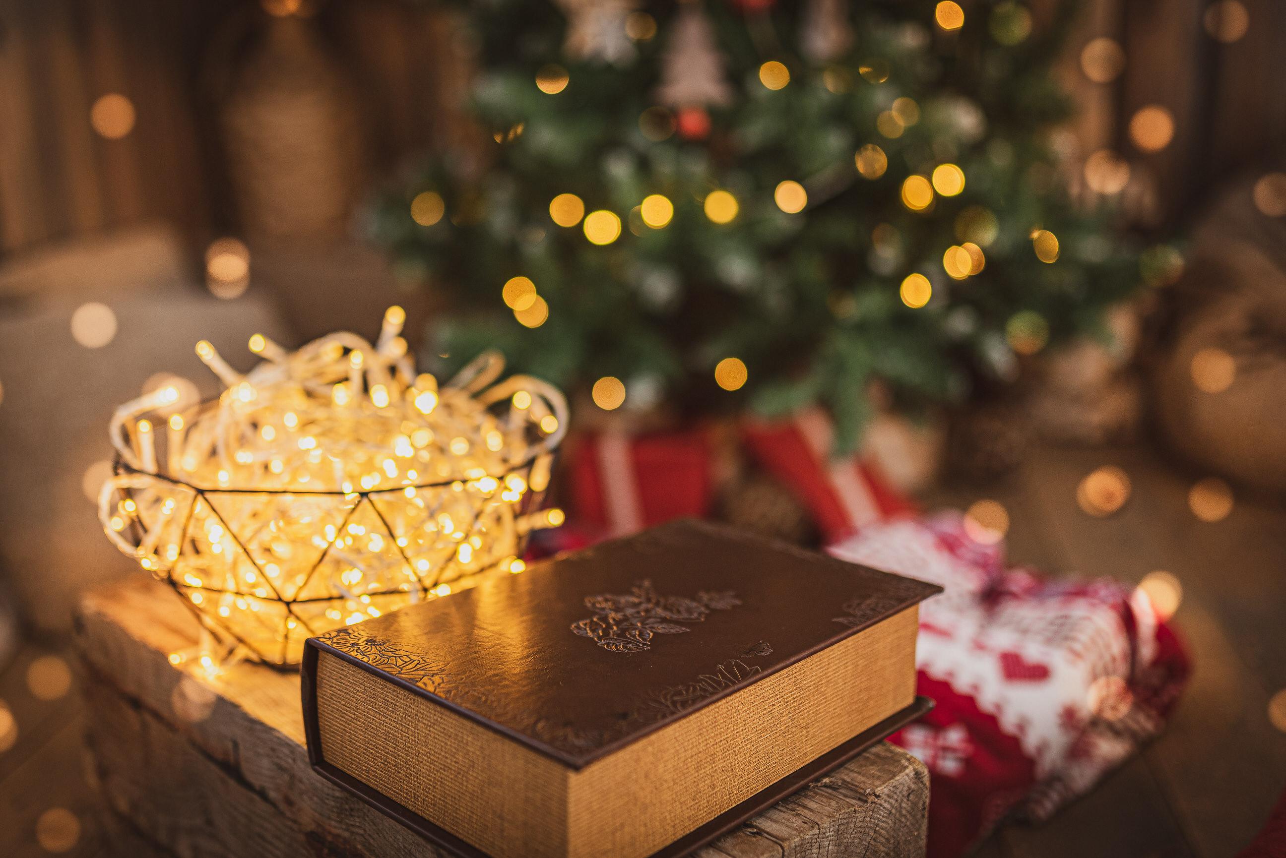 Ziemassvētku fotosesijas