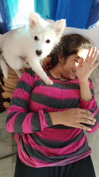 Charlie saying - ' She is mine ' A dog's love