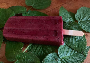 Elderberry and Dark Berry Popsicle