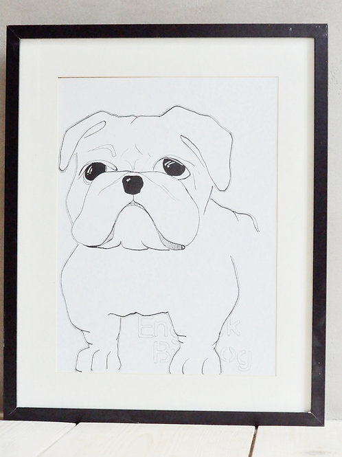 English Bulldog - Poster