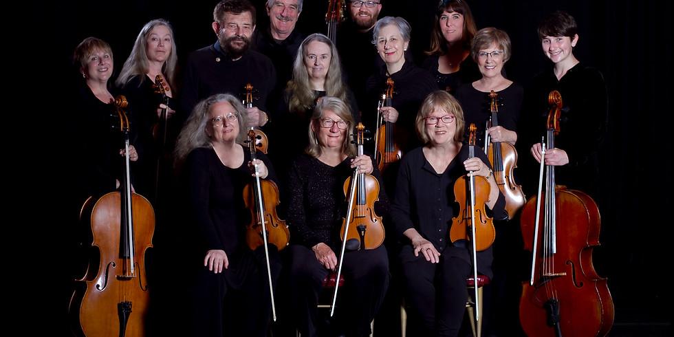 TBAM | Festival Strings