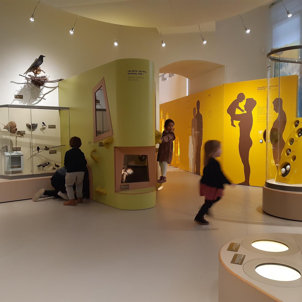 Musée des touts-petits