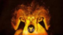 aries-fire.jpg