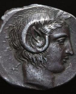 Apollo-horn-silver--242x300.jpg