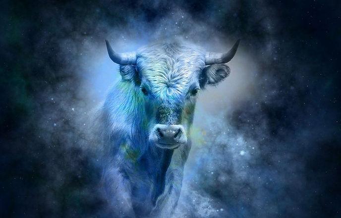 Taurus-1024x868.jpg
