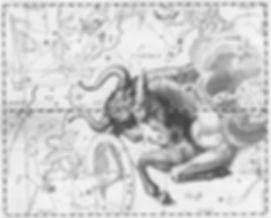 toro-hevelius-768x617.jpg