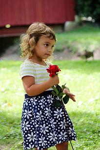 Blue Line Photography LLC, Wedding Photography, Russiaville Photography, Kokomo Photography, Senior Photos, Family Photos