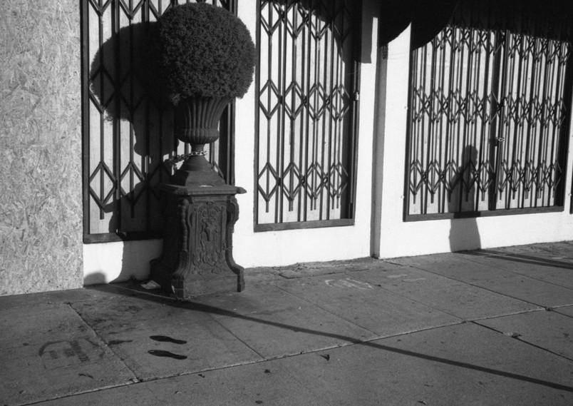 Beverly Hills 11:520201108_0019.jpg