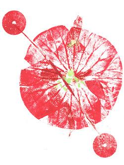 fleurs0172dpi.jpg
