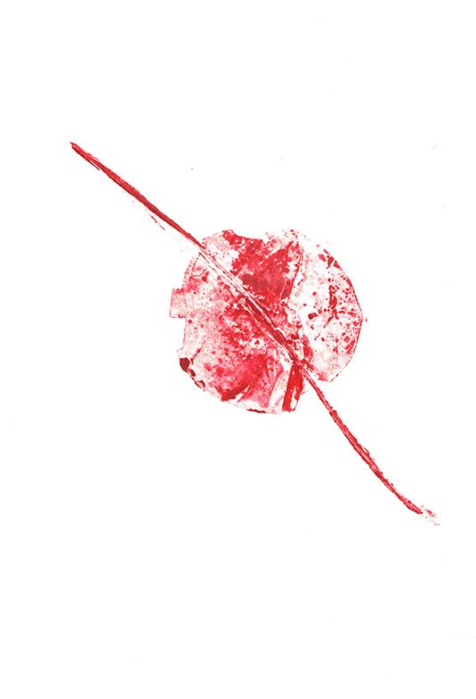 fleurs0672dpi.jpg