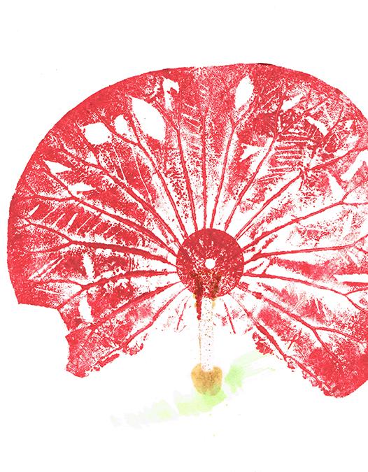 fleurs0272dpi.jpg