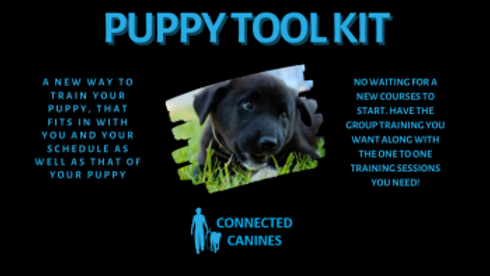 puppy-toolkit-1.png