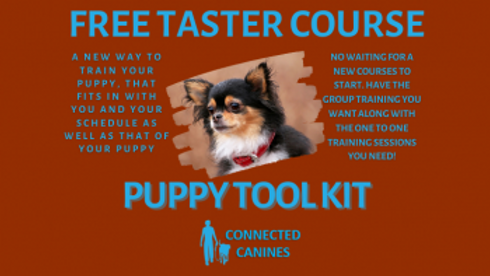 free-puppy-toolkit.png