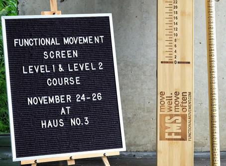 A system to screen your movement - FMS course at HAUS No3