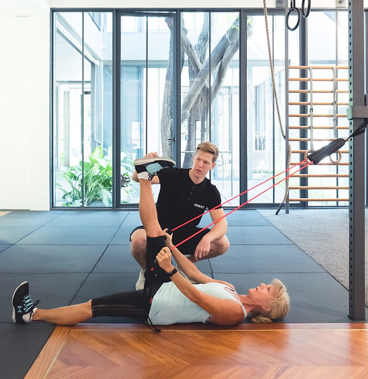 Gray Cook Exercise Band - Functional Movement Trainer (FMT)