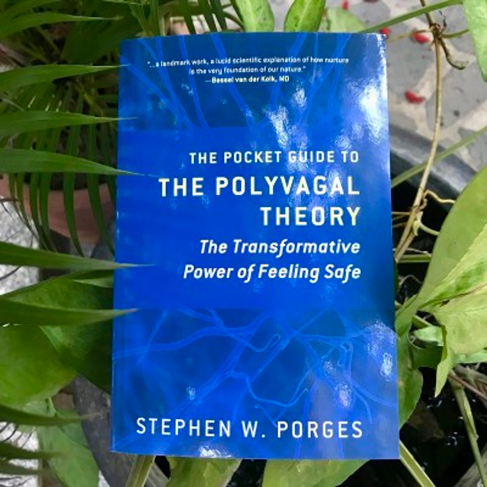 """A photograph of the book """"The Pocket Guide to the Polyvagal Theory"""" by Stephen W. Porges"""