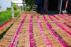 Incense drying in Hoi An old town