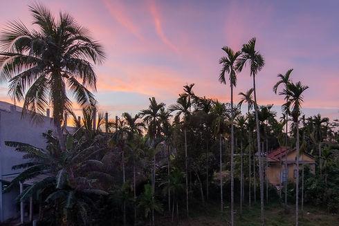 sunset-1_edited.jpg