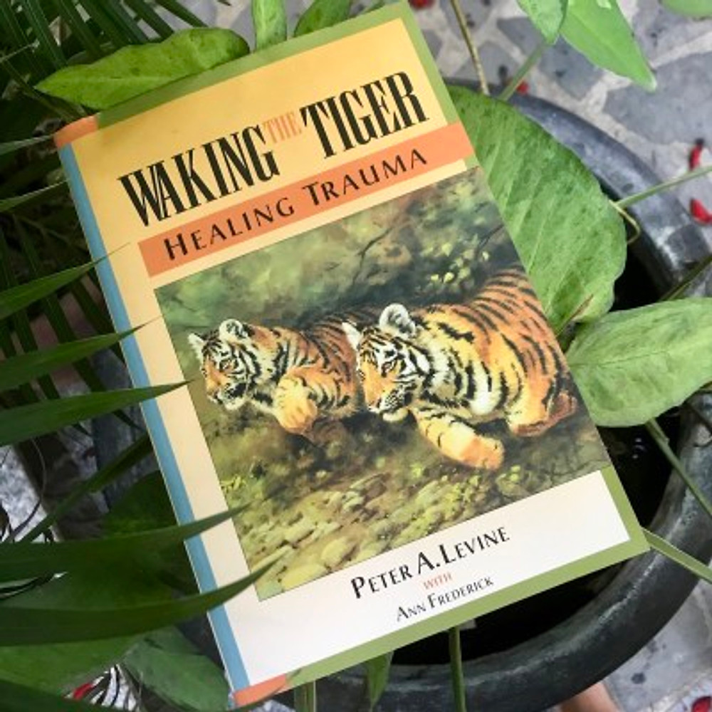 """A photograph of the book """"Waking the Tiger"""" by Peter Levine"""