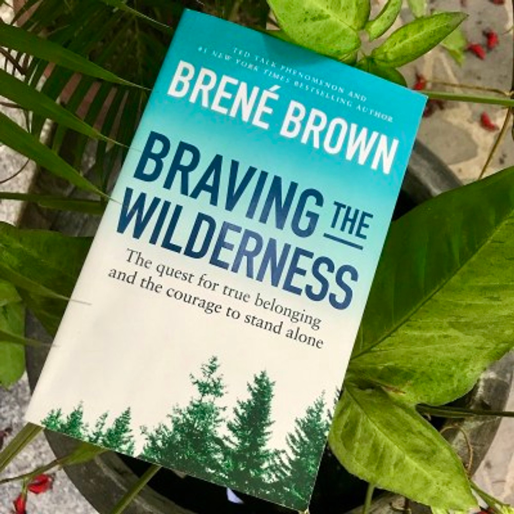 """A photograph of the book """"Braving the Wilderness"""" by Professor Brene Brown"""